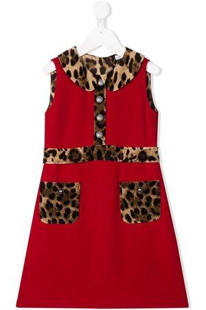 Dolce & Gabbana Leopard print trim dress
