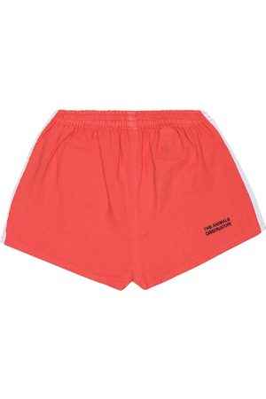 The Animals Observatory Spider cotton-jersey shorts