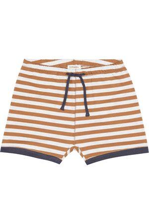 Caramel Belgravia stretch-cotton shorts
