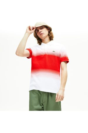 Lacoste Men's Made In France Cotton Piqué Regular Fit Polo Shirt : /