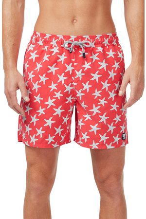 Tom & Teddy Men's Starfish Print Swim Trunks