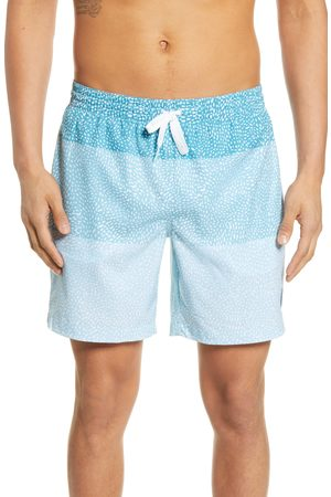 Chubbies Men's The Whale Sharks 7-Inch Swim Trunks