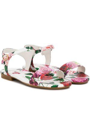 Dolce & Gabbana Rose print sandals