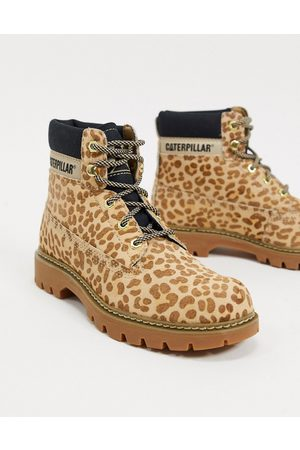 Cat Footwear Ankle Boots - CAT leather hiker boots in leopard-Multi
