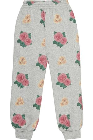 The Animals Observatory Dromedary cotton trackpants