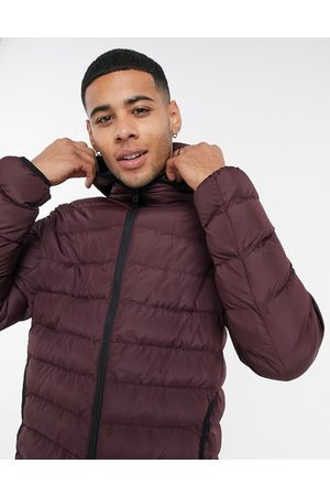 French Connection Padded hooded jacket in burgundy