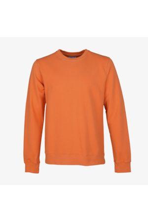 Colorful Standard Organic Cotton Sweatshirt Burned
