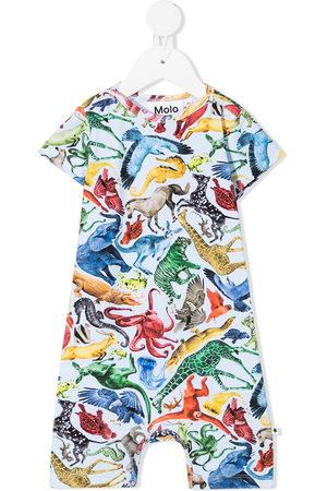 Molo Animal print shorties