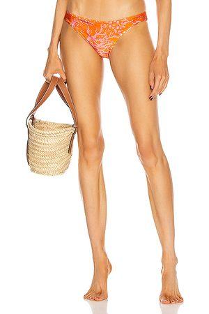 PATBO Oasis Classic Bikini Bottom in Animal Print