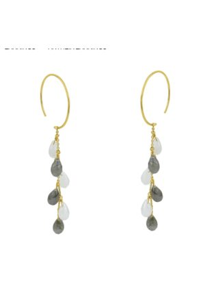 Pomegranate Antheia Earrings in Rainbow Moonstone