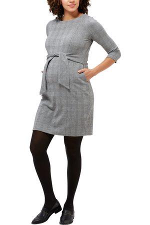 Nom Maternity Women's Frances Long Sleeve Maternity/nursing Dress