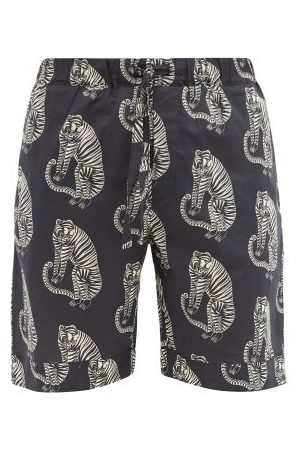 Desmond & Dempsey Sansindo Tiger-print Cotton Pyjama Shorts - Mens - Multi