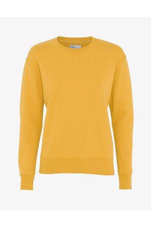 Colorful Standard Classic Organic Crew Sweatshirt - Burned