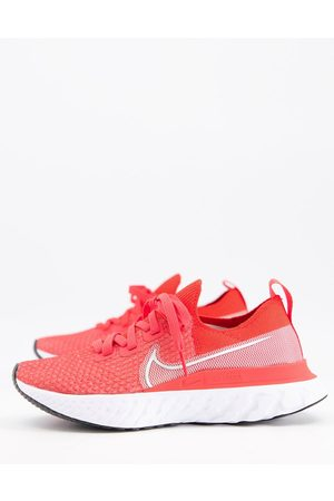 Nike React Infinity Run Flyknit sneakers in and silver