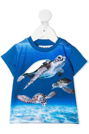 Molo Baby Turties-print round neck T-shirt