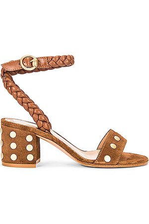 Gianvito Rossi Ankle Strap Stud Sandals in