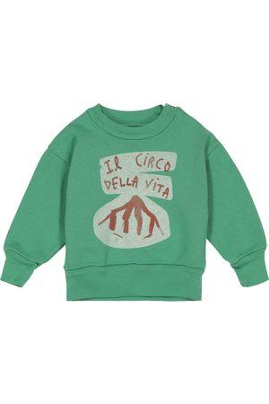 The Animals Observatory Sweatshirts - Baby Bear cotton sweatshirt