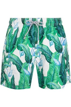 adidas Leaf-print swim shorts