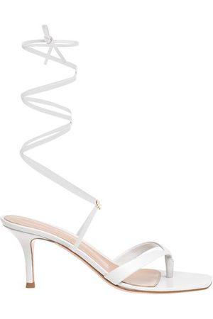 Gianvito Rossi Women Sandals - Ribbon Gladiator 70 sandals