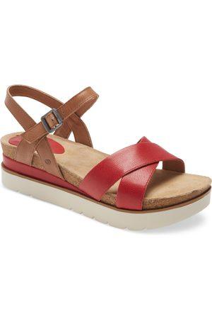 Josef Seibel Women Sandals - Women's Clea 10 Platform Sandal