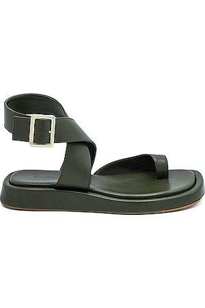 GIA/RHW Flat Toe Ring Wrap Sandal in Army