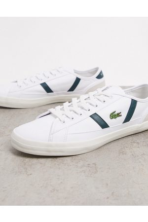 Lacoste Sideline leather sneakers with green stripes