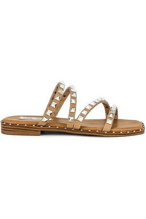 Steve Madden Women Sandals - Skyler Sandal in Tan.