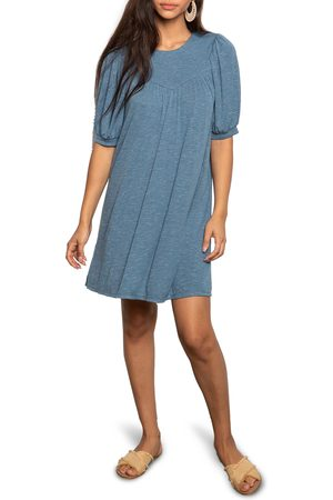 dRA Women's Clara Knit Shift Dress