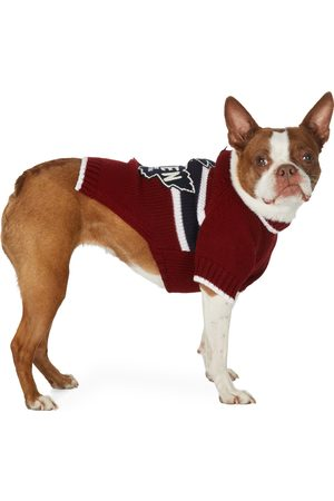 Dsquared2 Poldo Dog Couture Edition Quebec Sweater