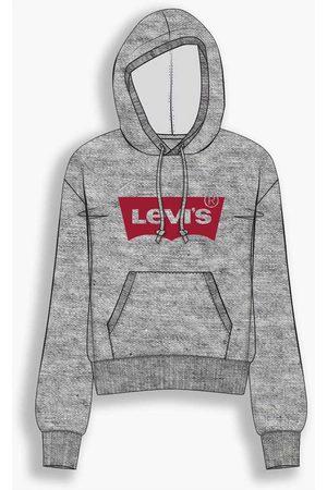 Levi's Graphic Standard L Hoodie Core Batwi Greys