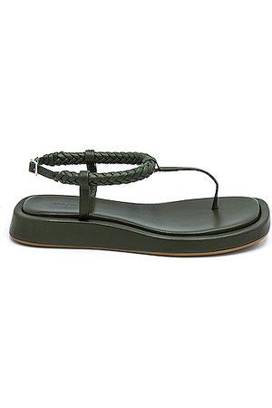 GIA/RHW Flat Thong Sandal in Army