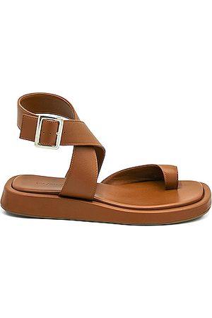 GIA/RHW Women Flat Shoes - Flat Toe Ring Wrap Sandal in