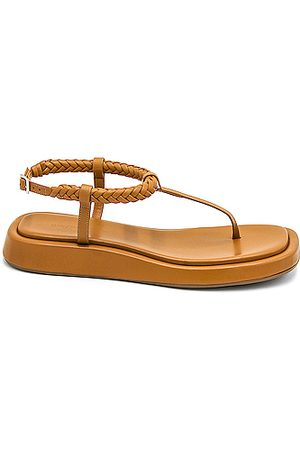 GIA/RHW Flat Thong Sandal in Neutral