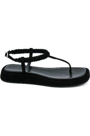 GIA/RHW Flat Thong Suede Sandal in