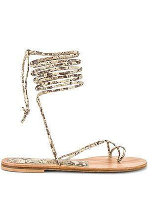 Cornetti Arutas Lace Up Sandal in .