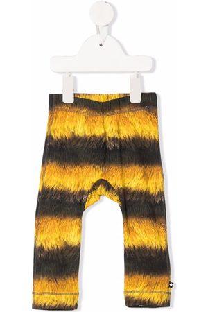 Molo Kids Seb bee-print stretch-organic cotton leggings - Grey