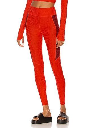 TWENTY MONTREAL Caiman Crocodile 3D Activewear High Waist Active Legging in Red