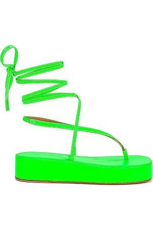 Amina Muaddi Women Sandals - Jamie Flatform Sandal in