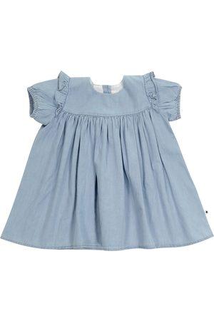 Molo Baby Chanda denim dress