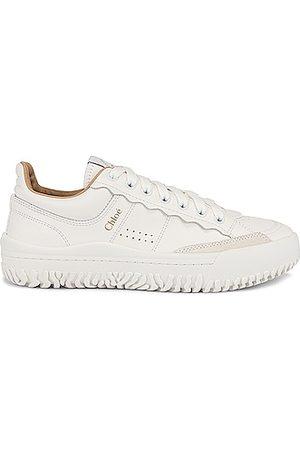 Chloé Franckie Sneakers in