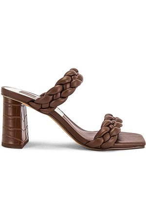 Dolce Vita Paily Heel in Chocolate.