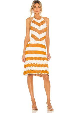 BCBGeneration Sweater Halter Dress in Burnt Orange.