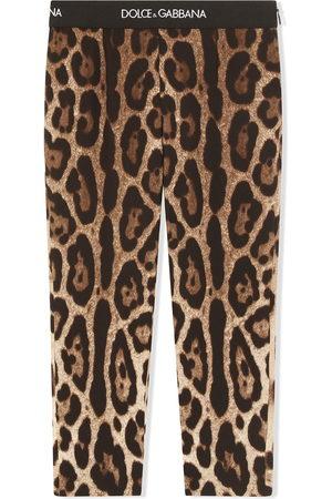 Dolce & Gabbana Leopard-print stretch-silk leggings