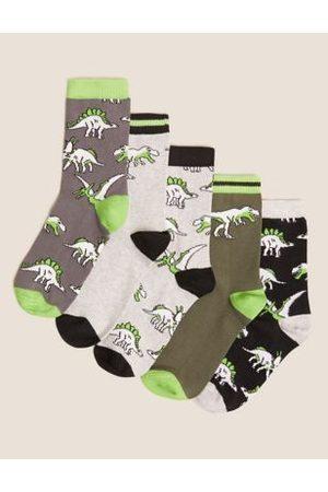 5pk Cotton Dinosaur Socks