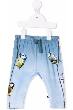 Molo Baby Leggings - Bird-print organic cotton leggings