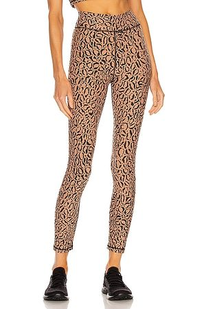 The Upside Leopard Midi Pant in Brown