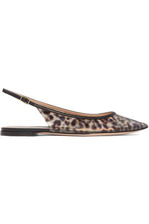Gianvito Rossi Women Flat Shoes - Woman Jen Leopard-print Pvc Slingback Point-toe Flats Animal Print Size 36