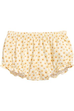 Seed Heritage Infant Girl's June Bug Daisy Cotton Bloomer Shorts