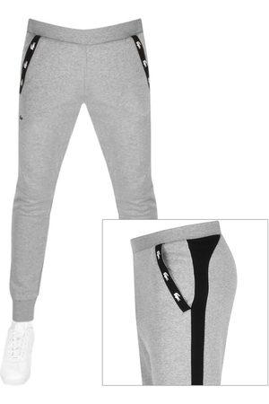 Lacoste Jogging Bottoms Grey