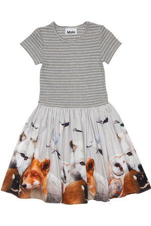 Molo Animals Print Organic Cotton Dress
